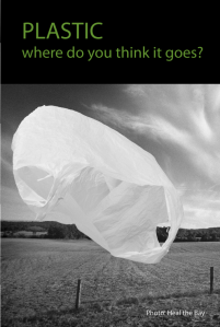 Plastic - where do you think it goes?